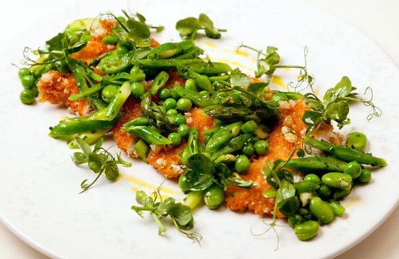 Steven Smith's Panko-crumbed Turkey Salad of Spring Greens, Honey & Lavender Dressing