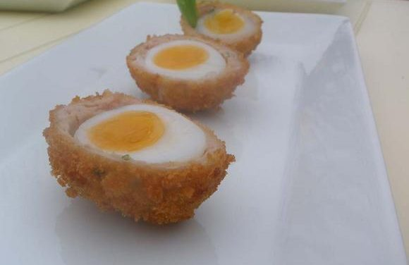 Turkey & Tarragon Scotch Egg